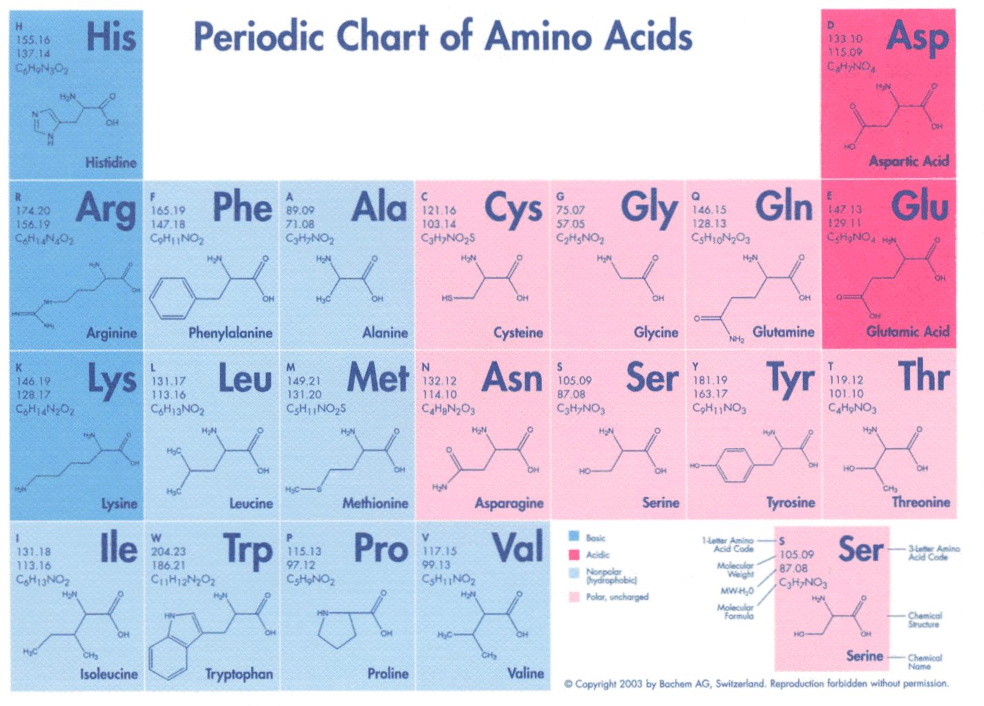 Codigo Aminoácidos